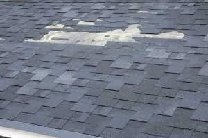 roof maintenance: check roof for missing or damaged shingles | TruHome Inc services Monroe, WI and Tristate area