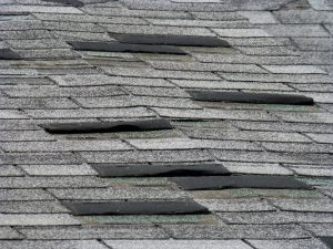 shingle maintenance tip: repair damaged shingles | TruHome Inc providing remodeling, roofing, windows, concrete floors, and siding services in Monroe, WI and Tristate area