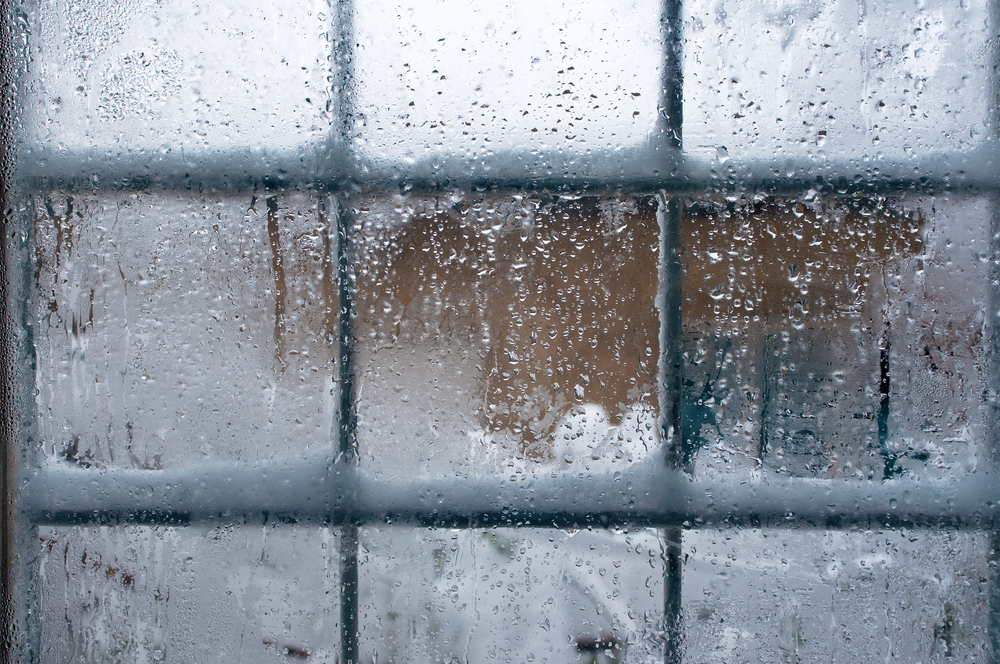 Best Windows for Winter Weather